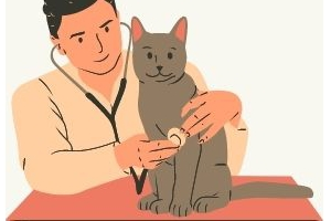 Your Responsibility as a Pet Owner