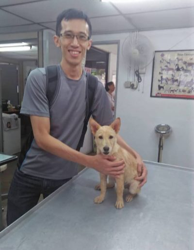 Shiro (July 2018)